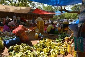 Bananer i mängd