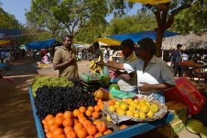 Frukt, mer frukt och åter frukt