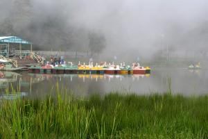 Svanbåtar till uthyrning