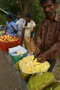 Frukt på vägen hemåt, jack och diverse andra exotiska frukter