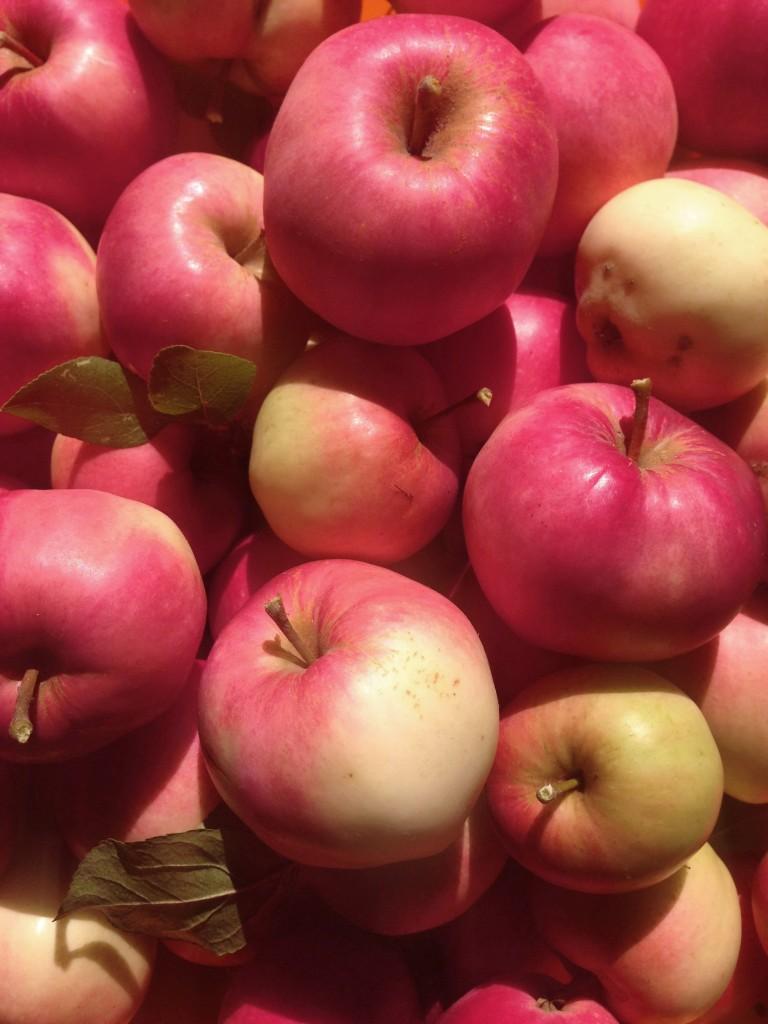 Mio-äpplen,
