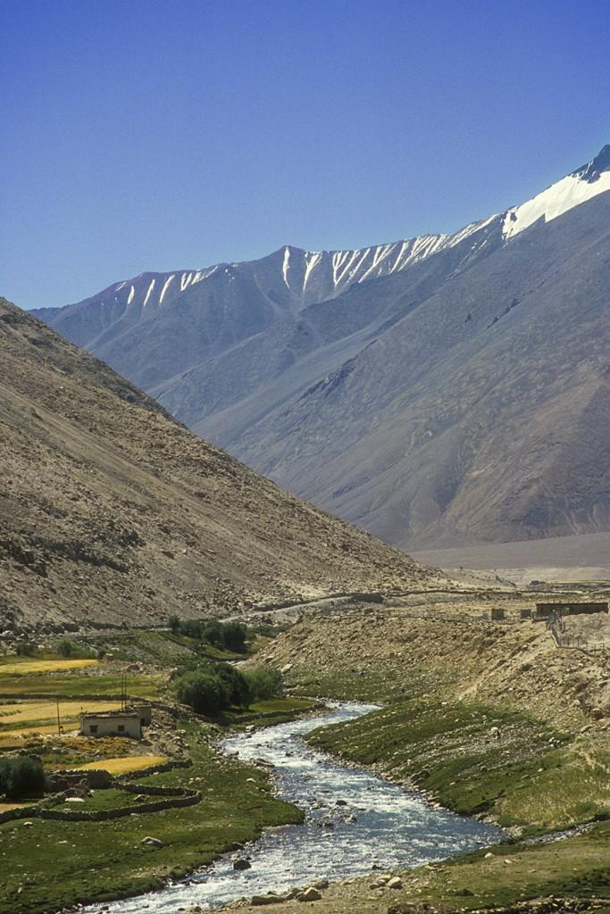 Gula fält av mognande korn och en glaciärfors, allt omgivet av Himalayas veckade berg