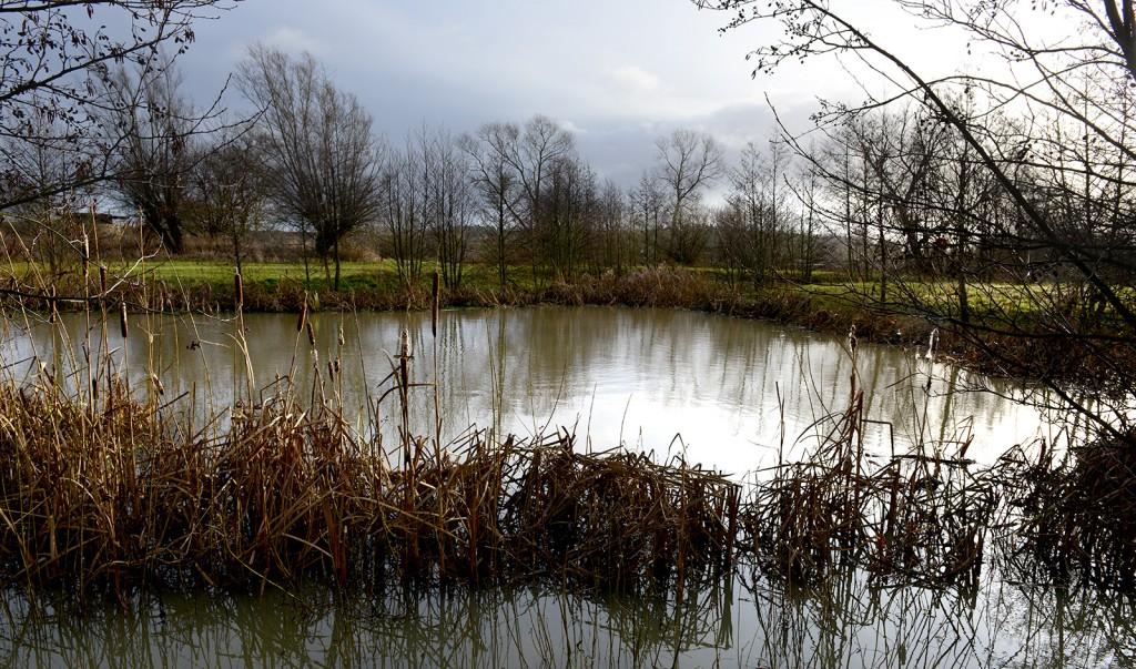 Damm vid Asmundtorp