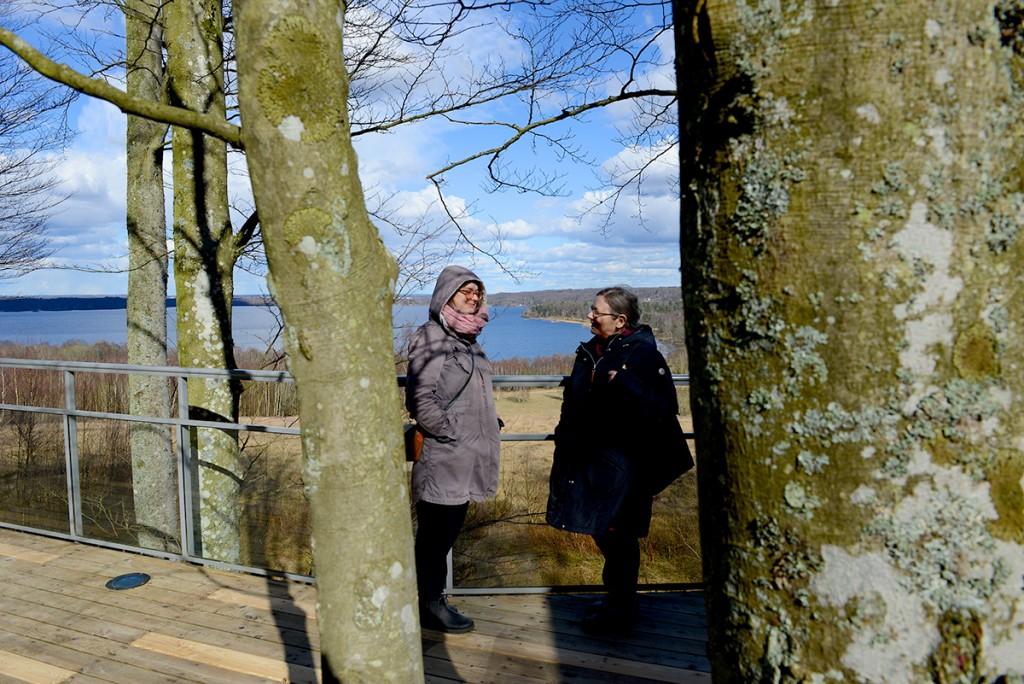Uppe i trädhuset med utsikt över Finjasjön